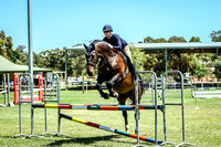 Show Jumping - 90cm