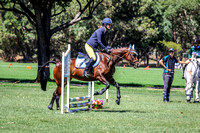 Show Jumping - 30cm & 45cm