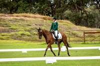 Dressage 10.00am to 11.00am