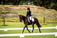 Dressage 1.00pm to 2.00pm