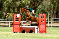 Show Jumping - 105cm