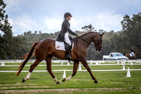 CIC & CCI 3*** Star Dressage