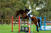 120cm show jumping
