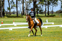 Arena 2 - Pony Club Dressage