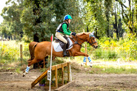 Log Fence Pony Club Hickstead