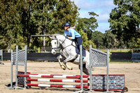 60cm Show Jumping