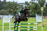 85cm show jumping