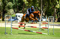 Show Jumping - 110cm