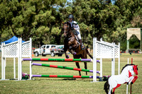95cm Show Jumping