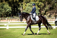 Valley Equine Vet Centre State Dressage Championships
